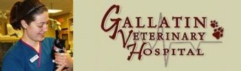 gallatin veterinary hospital