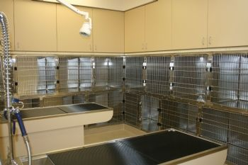 veterinary cage and run installation
